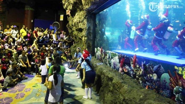 Dua Biota Laut Sea World Ancol Prediksi JuaraFinal Piala Dunia 2018, Ini Hasilnya