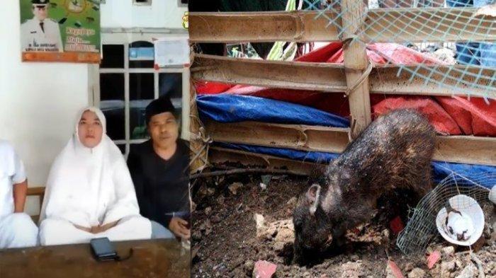 Seorang ibu-ibu yang tuduh tetangga pakai babi ngepet kini minta maaf.