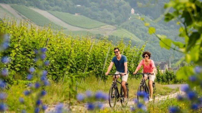 Nikmati Alam Jerman dengan Bersepeda, Pemandangan Pantai Laut Utara hingga Pegunungan Alpen