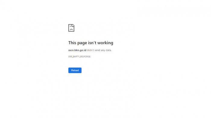 Alami Error atau Server Down saat Akses ke sscn.bkn.go.id, Ini Cara Jitu Mengatasinya, Jangan Panik!