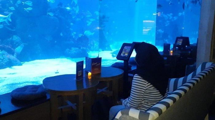 Merasakan Sensasi Makan Dalam Akuarium di Ocean Lounge Jakarta Aquarium