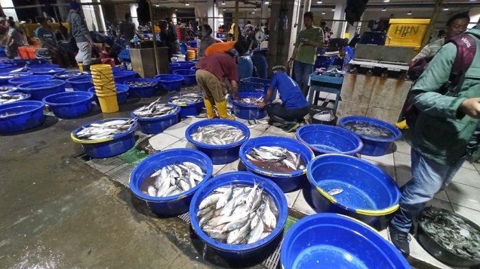 Pedagang di Pasar Ikan Modern Muara Baru Perkirakan Harga Bandeng Naik Tiga Hari Jelang Imlek