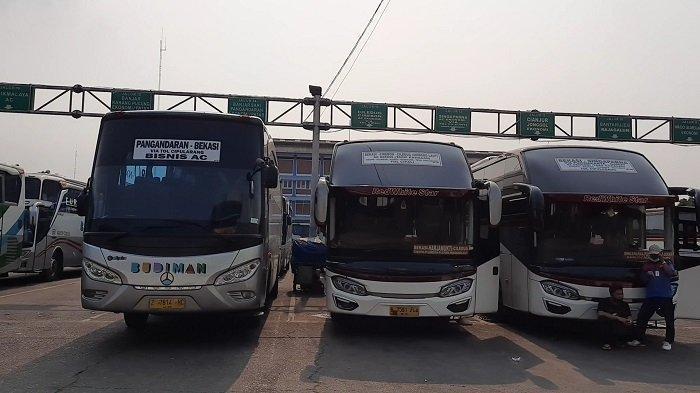 Lebaran Harusnya Banjir Rejeki, Larangan Mudik Bikin PO Bus Gigit Jari