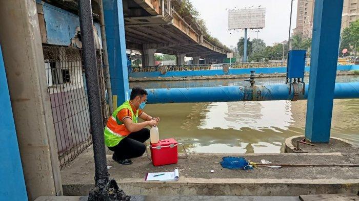 Ikan Mati Mendadak dan Aroma Tak Sedap Muncul di Kali Ancol, Sudin LH Jakarta Utara Ambil Sampel Air