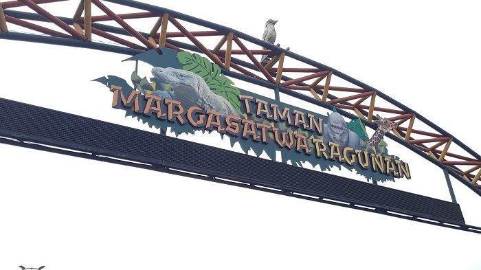 Minggu Siang, Pengunjung Taman Margasatwa Ragunan Hampir 3.000 Orang
