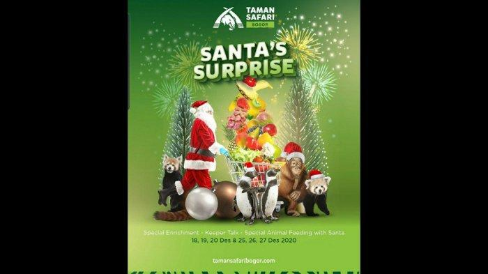 Pada hari natal, Taman Safari Bogor melaksanakan spesial animal feeding with Santa Claus dengan menghadirkan Santa ke tengah-tengah pengunjung untuk merayakan suka cita natal bersama