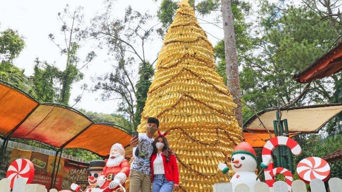 2020 Botol Bekas Disulap Jadi Pohon Natal di Taman Safari Bogor