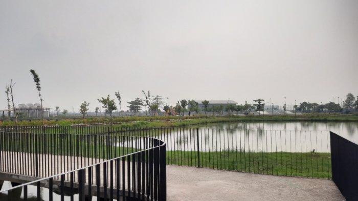 Pemandangan di Taman Sungai Kendal, Jakarta Utara.Menariknya, biasanya di sini juga ditumbuhi dengan bunga matahari yang bermekaran.