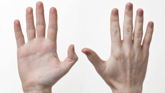 Ternyata 10 Bahan Rumahan Ini Bisa untuk Mencegah Kulit Tangan Kering dan Kusam