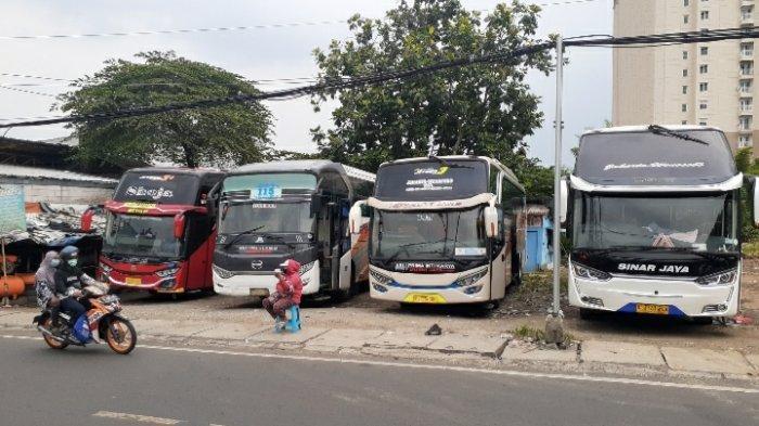 Harga Tiket Bus Meroket 100 Persen, Pemudik di Ciputat Tetap Antusias Pulang Kampung