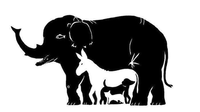 Tes Kepribadian - Jumlah Hewan yang Ditebak Tunjukkan Kecerdasan dan Ketelitian Seseorang