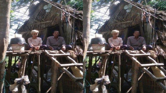 Pasutri Terpaksa Tinggal di Kandang Ayam Bersama Peliharaannya, Sudah Akrab dengan Aroma Tak Sedap
