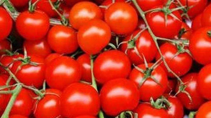 Yuk Intip Sederet Manfaat Buah Tomat, Bisa Cegah Kanker hingga Depresi