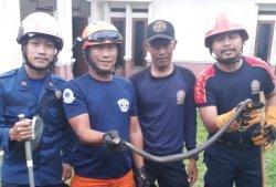 Petugas Damkar Amankan Ular Kobra Satu Meter Sembunyi Dalam Sumur Rumah Warga di Depok