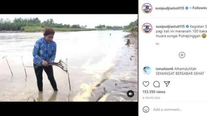 Unggahan video Susi Pudjiastuti saat menanam bakau.