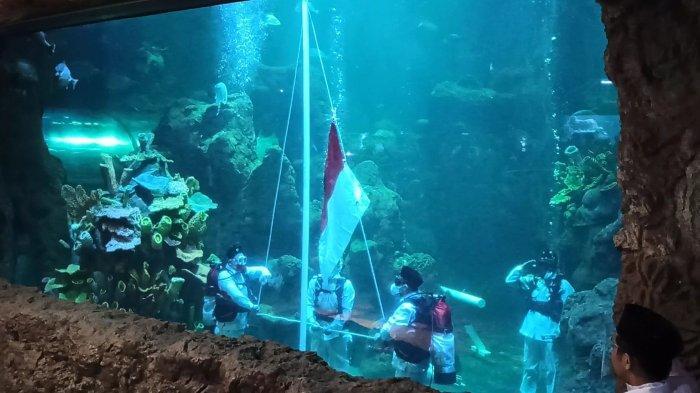 HUT ke-75 Kemerdekaan RI, Penyelam Kibarkan Bendera Merah Putih dalam Akuarium Sea World Ancol