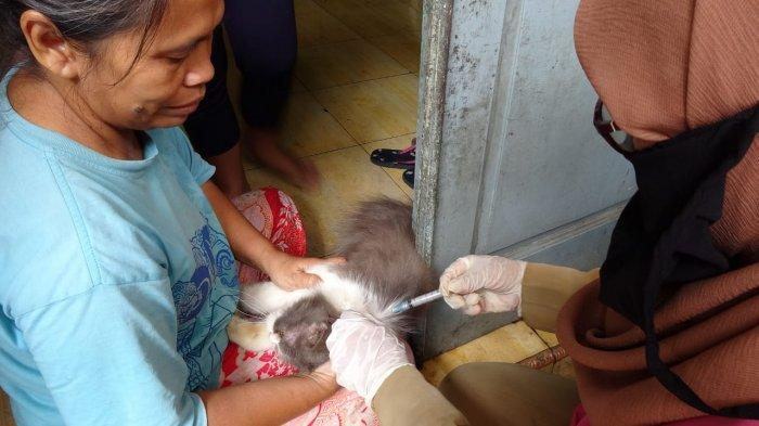 Cegah Penularan Rabies, Pemkot Jakarta Utara Gelar Vaksinisasi Hewan Peliharaan di Koja