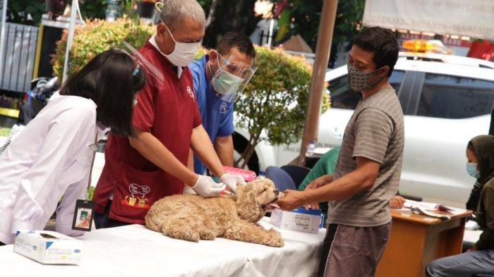 Cegah Rabies, Pemkot Jakarta Pusat Suntik Vaksin Gratis kepada 1.968 Hewan