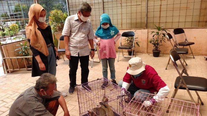 Sudin KPKP Jakarta Barat Telah Vaksin Rabies Sebanyak 4.826 Ekor Hewan