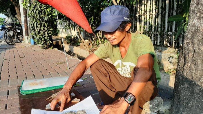 29 Tahun Jual Kroto di Jakarta, Cerita Wandi Hasilkan Jutaan Rupiah Tiap Bulan: Perkilo Rp 600 ribu
