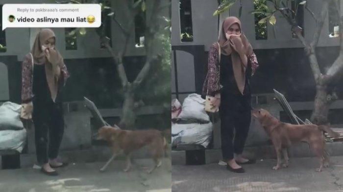 Bertemu Lagi Setelah Dikejar Saat SMP, Begini Reaksi Wanita Dihampiri Anjing Tetangga Temannya