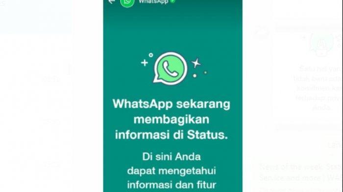 Muncul Status Whatsapp di Pengguna, Begini Tujuan dan Penjelasannya