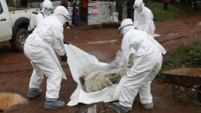 Pencegahan Ebola, Angkasa Pura Perketat Pengawasan Penumpang dari Luar Negeri