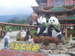 1-giant-panda-salah-satu-destinasi-favorit-pengunjung.jpg