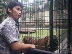 alshad-ahmad-di-kandang-harimau.jpg