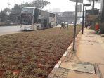 area-taman-memisahkan-halte-bus-dan-jalan-sudirman_20180724_175033.jpg