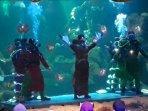 barongsai-underwater.jpg