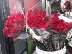 bunga-mawar-merah_20180213_203520.jpg