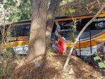 bus-tersesat-di-hutan.jpg