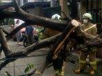 evakuasi-pohon-ceri-tumbang.jpg