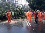 evakuasi-pohon-yang-tumbang-di-jalan-brawijaya-iii-senin-2512021.jpg