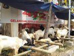 hewan-hewan-kurban-kambing-yang-dijual-di-depan-gedung-gor.jpg