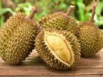 ilustrasi-buah-durian-ini-daftar-orang-yang-dilarang-makan-durian.jpg