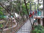 jembatan-instagenis-di-hutan-kota-jombang.jpg