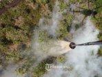 kebakaran-hutan-di-sumatera-selatan_20180807_052515.jpg