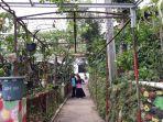 kebun-anggur-di-permukiman-warga-rw-06-kelurahan-munjul-kecamatan-cipayung-2.jpg
