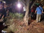 kondisi-pohon-yang-terkoyak-setelah-insiden-ledakan-di-kawasan-nobar-debat-capres.jpg