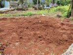 kuburan-babi-yang-diduga-jadi-jadian-di-rt-0204-kelurahan-bedahan-sawangan-kota.jpg