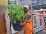 martono-mengangkat-pot-tanaman-di-kantor-kelurahan-pondok-pinang-pada-kamis-7102021.jpg