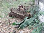 mayat-pria-ditutupi-daun-pisang-yang-ditemukan-di-kawasang-pesanggrahan-jakarta-selatan.jpg