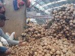 pedagang-di-pasar-induk-kramat-jati-jakarta-timur-selasa-1162019.jpg
