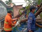 petugas-benahi-pohon-tumbang.jpg