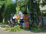 petugas-kehutanan-memangkas-pohon-yang-dinilai-tumbang-di-kawasan-gambir.jpg