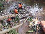 petugas-mencabuti-sampah-yang-tersangkut-di-pohon-loa-di-bantaran-sungai-ciliwung.jpg