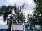petugas-pln-tewas-tersengat-listrik-kecamatan-periuk-kota-tangerang-kamis-26112020.jpg