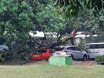 pohon-tumbang-di-halaman-parkir-universitas-pancasila.jpg
